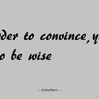 In order to convince, you have to be wise